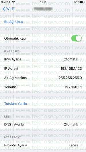 iphone dns tanımlama,iphone ip tanımlama,iphone yasaklı sitelere nasıl girilir,iphone dns değiştirme
